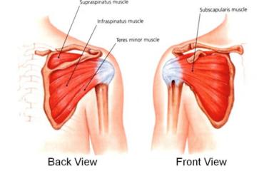 Shoulder Conditions